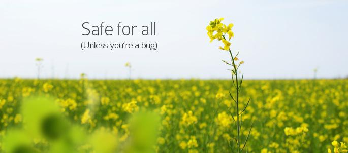 Environmentally Safe Pest Control Service